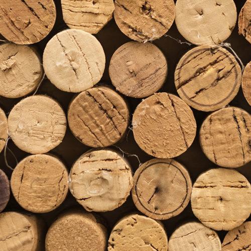 vinacotecas